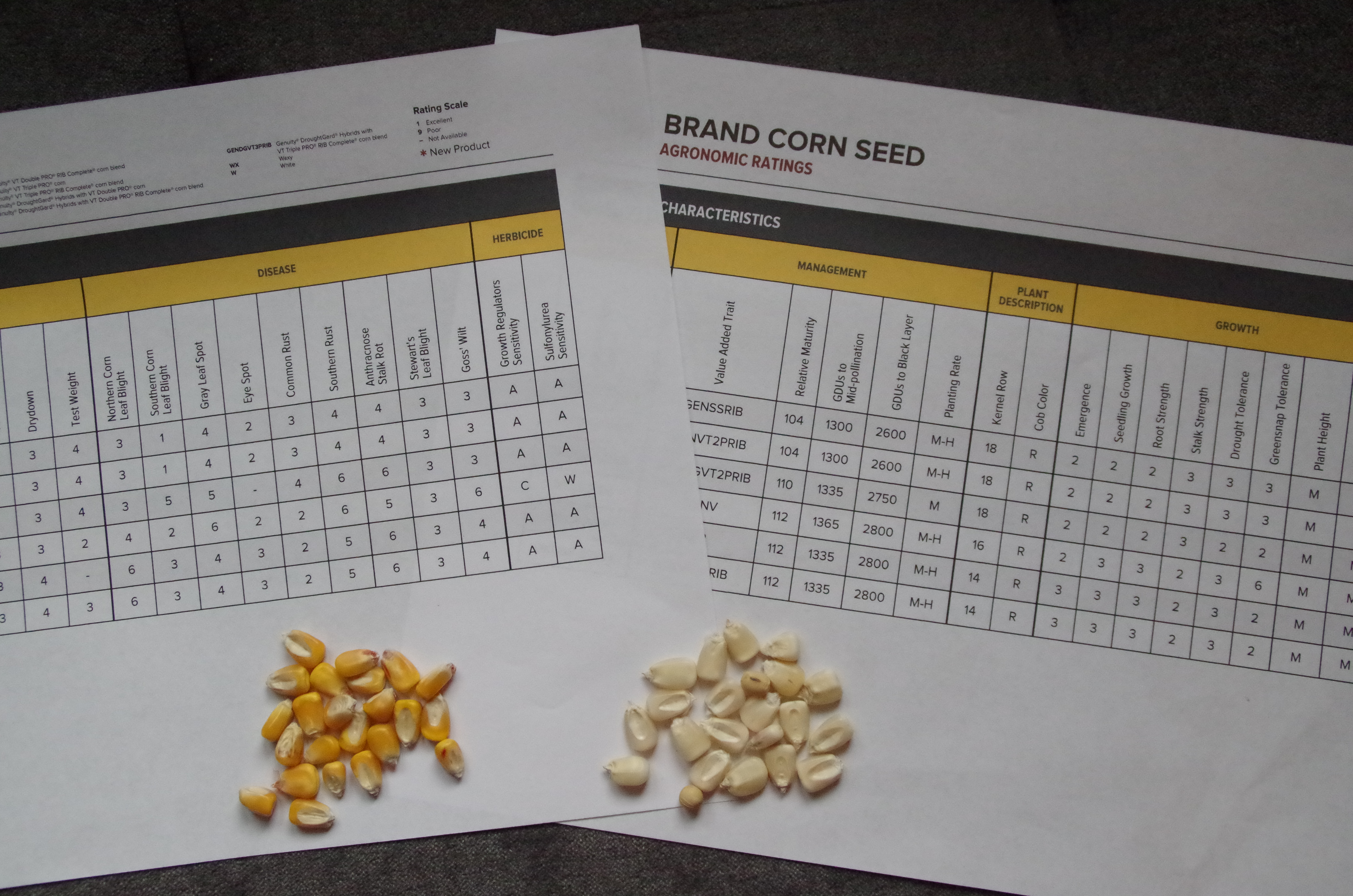 How Farmers Select Seeds